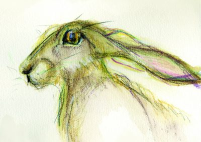 Harry the hare print Beth Robinson