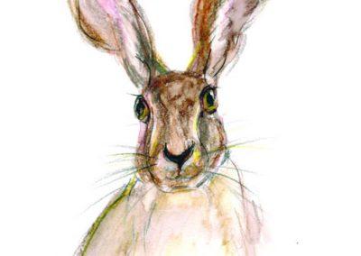 hare print Beth Robinson